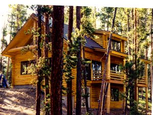Log siding, Granby CO,