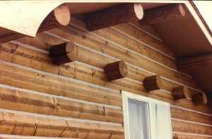 Rafter tails and purlins on log siding.