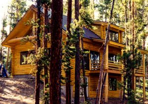 2 story log sided home in the forest.