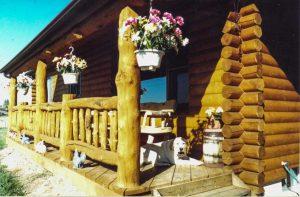 Log porch with dog